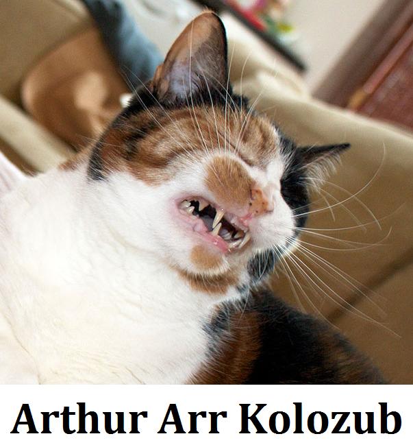 Arthur Arr Kolozub