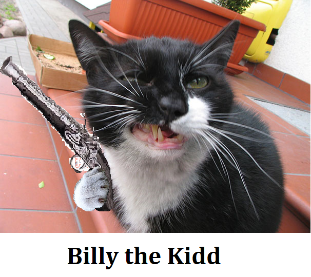 Billy the Kidd