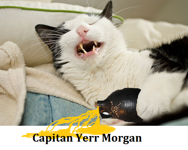 Capitan Yerr Morgan