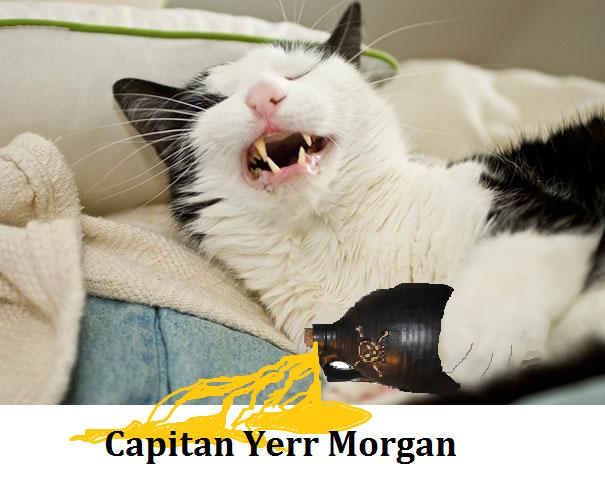 Capitan Yerr Morgan