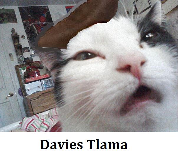 Davies Tlama