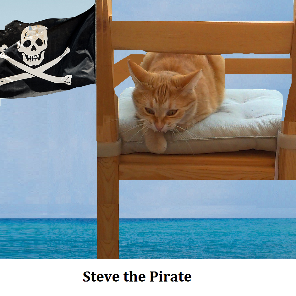 Steve The Pirate