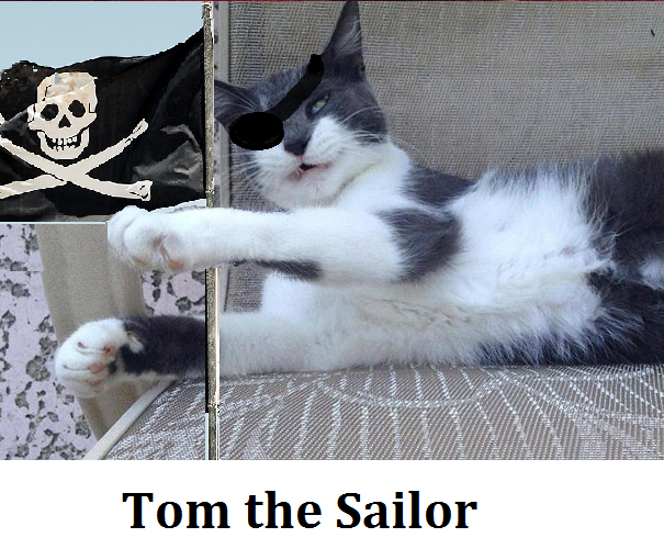 Tom the sailor