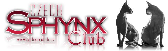 don sphynx club