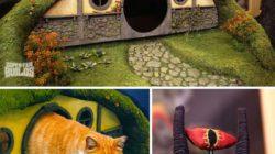 18 bláznivých kočičích věcí, které si určitě budete chtít pořídit