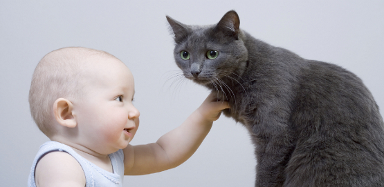 kids-and-cats-1