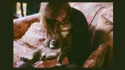 Je vaše kočka doma šťastná? 5 tipů, jak jí zlepšit život v interiéru