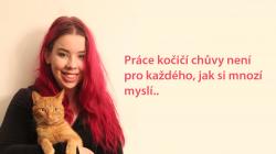 Kočičí chůva Anna: musím umět zaujmout každou kočku…